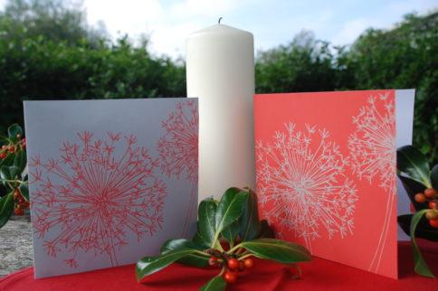 Horatio's Garden 2013 Christmas cards on sale