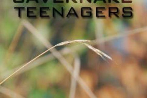 Savernake Teenagers raise £4000