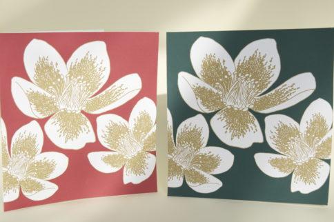 Horatio's Garden Christmas cards 2014