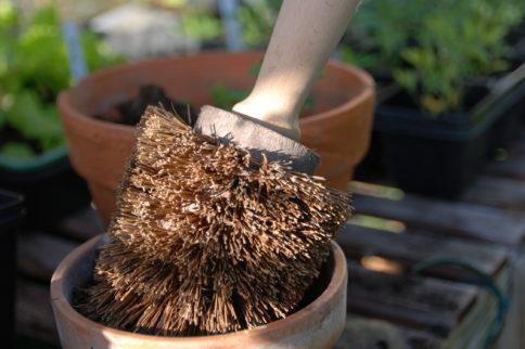 Head Gardener for Horatio's Garden Scotland