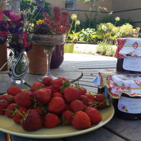 Strawberry Jam!