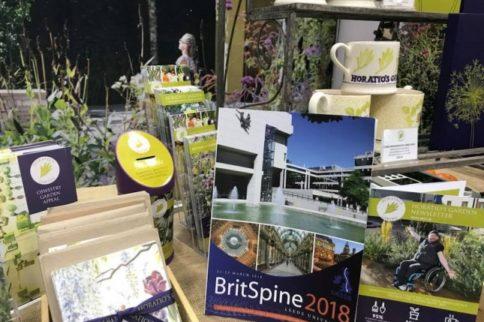 BritSpine 2018