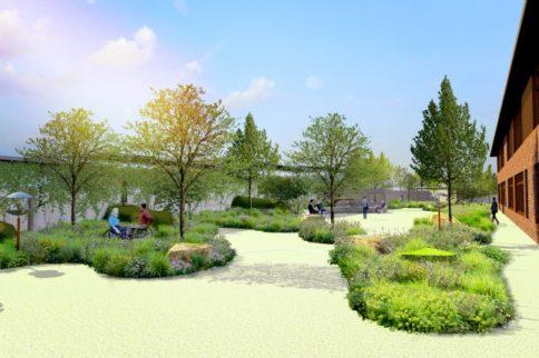 Work with Horatio's Garden: Head Gardener at Stoke Mandeville