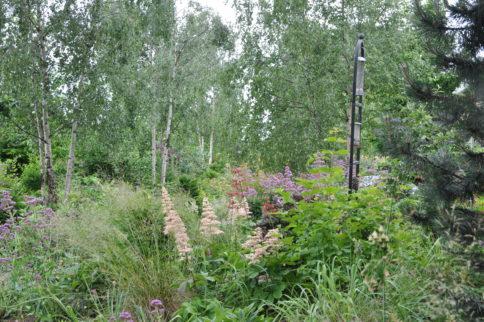 A busy day for Horatio's Garden Scotland