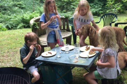 Dolhyfryd Family Picnic Fundraiser