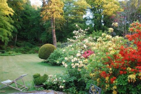 Dolhyfryd National Garden Scheme Open Garden