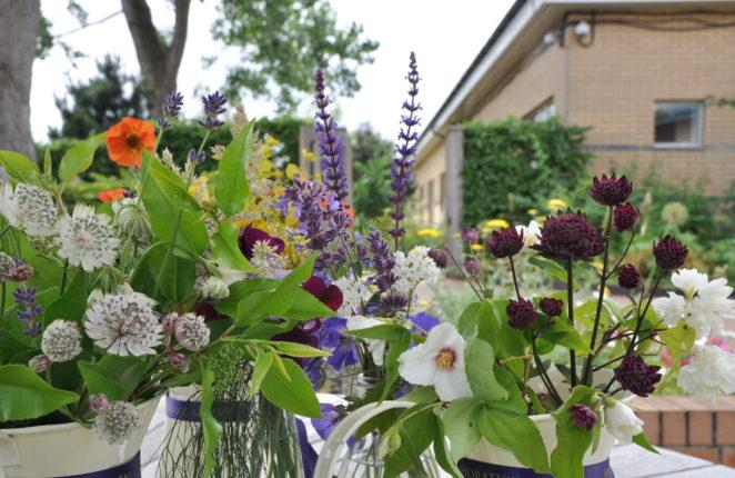 Flower cuttings