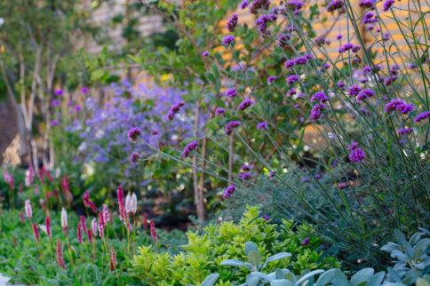 horatio's garden on spire fm