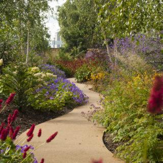 Horatio's Garden Scotland