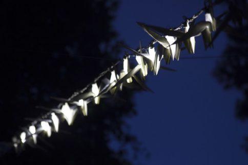 kathy hinde art installation coming to horatio's garden salisbury