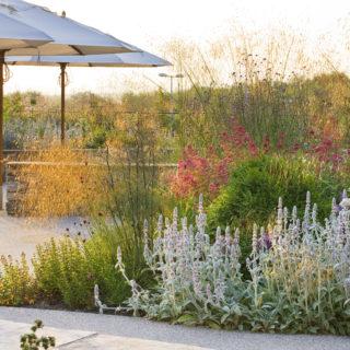 Horatio's Garden Salisbury