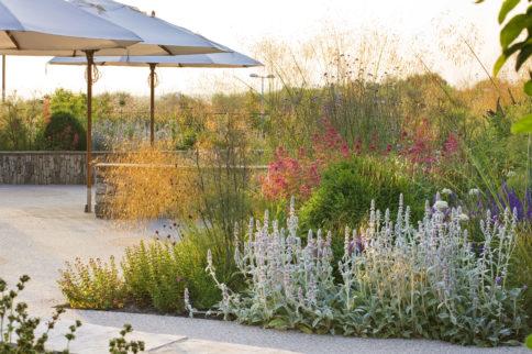 watch and listen to horatio's garden on bbc radio 4