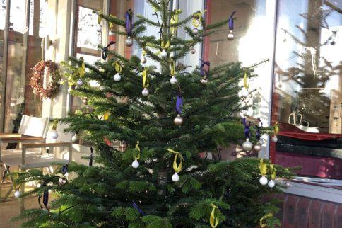 salisbury christmas tree
