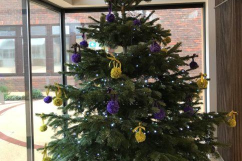 stoke mandeville christmas tree