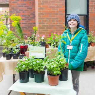 Plant Sale Volunteer