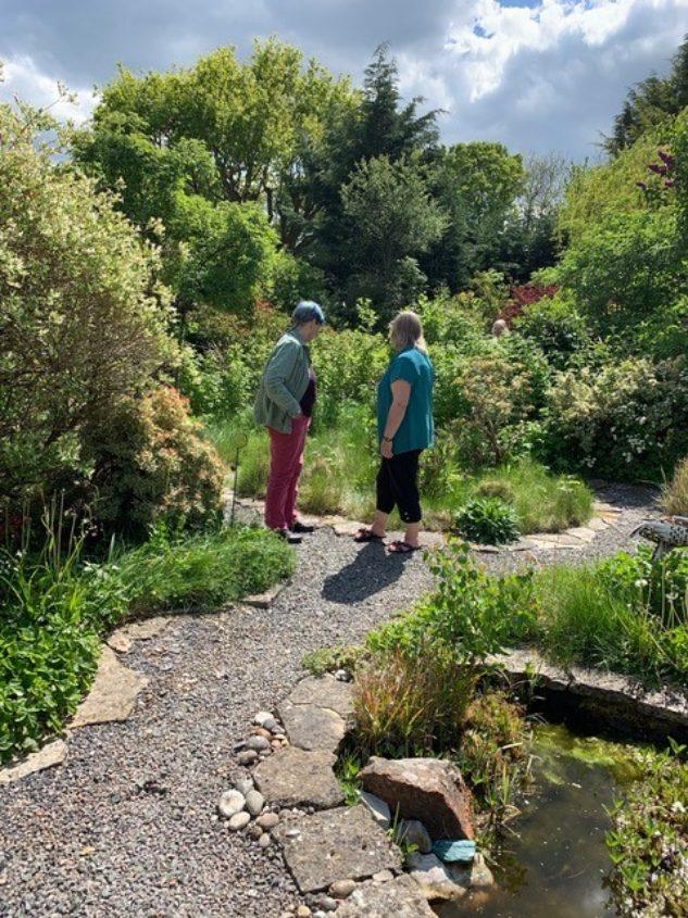 People Admire Garden