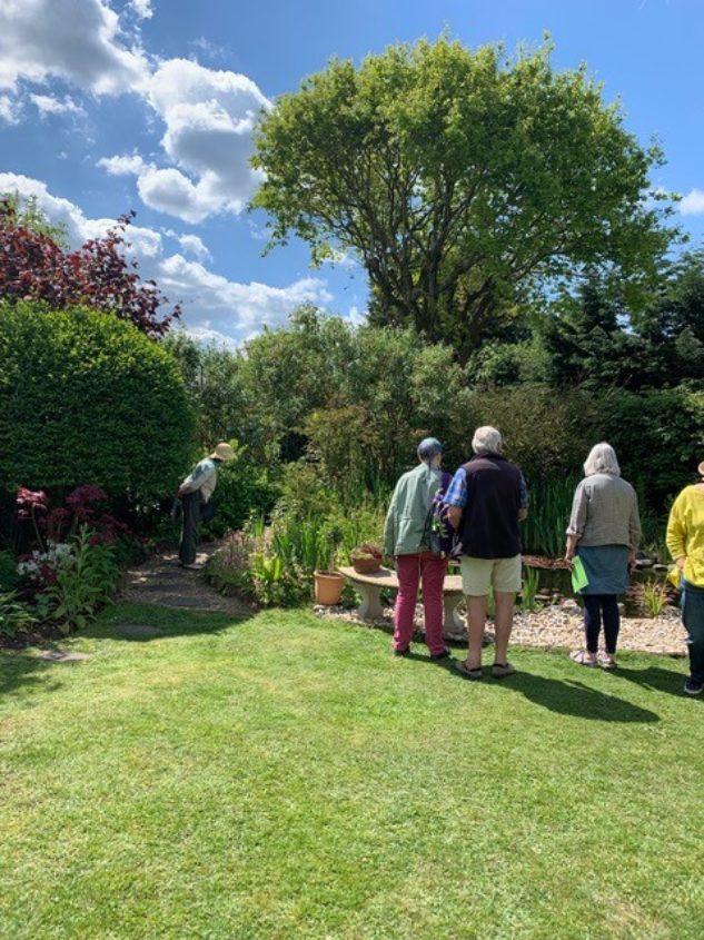 Visitors Admire Garden