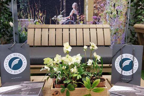 gaze burvill rhs chelsea flower show preview event