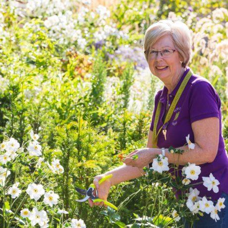 Nurturing the Gardens