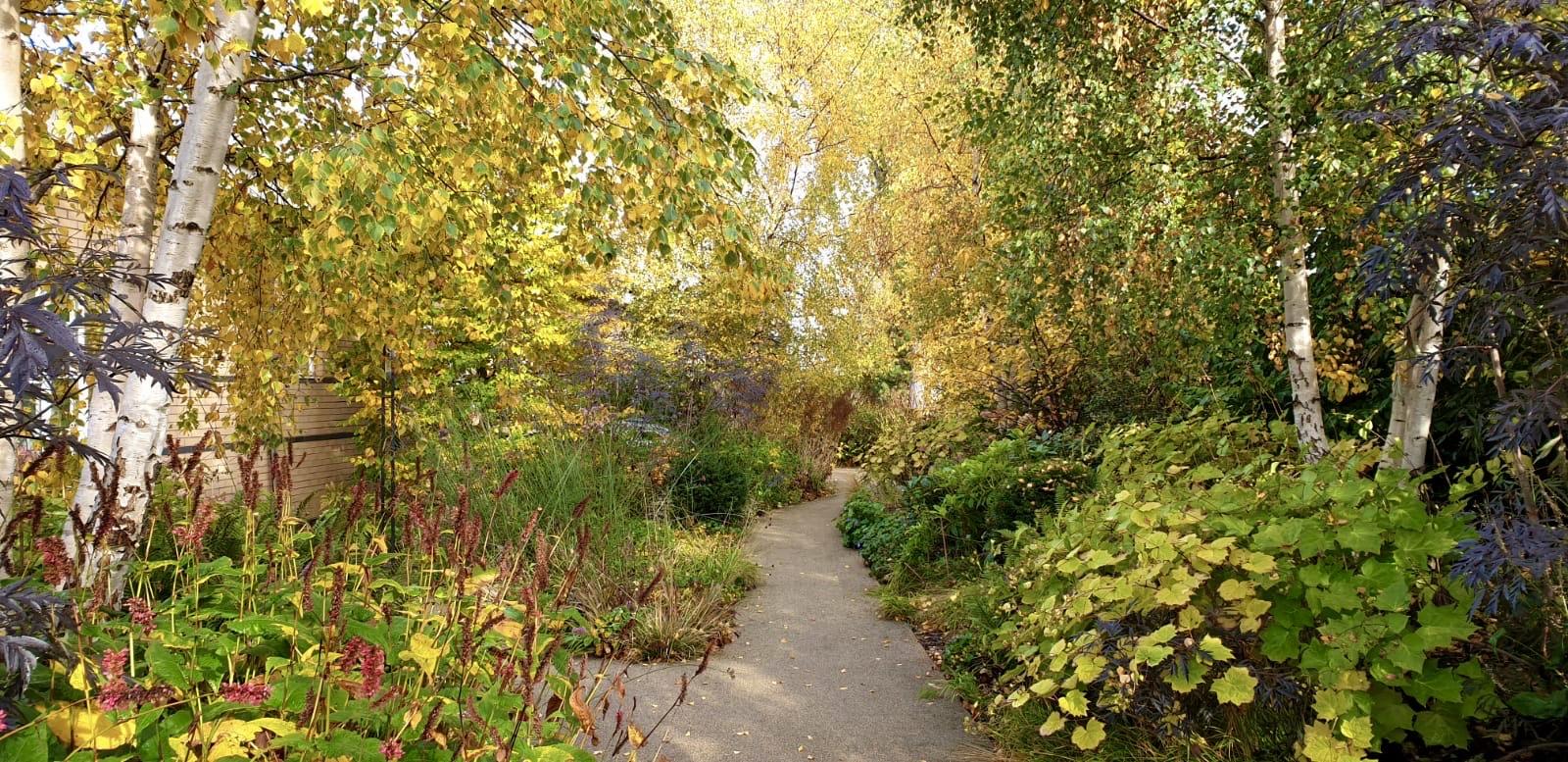 Autumn in Horatio's Garden Scotland