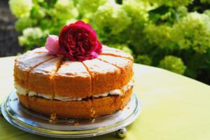 Cake in Horatio's Garden Scotland