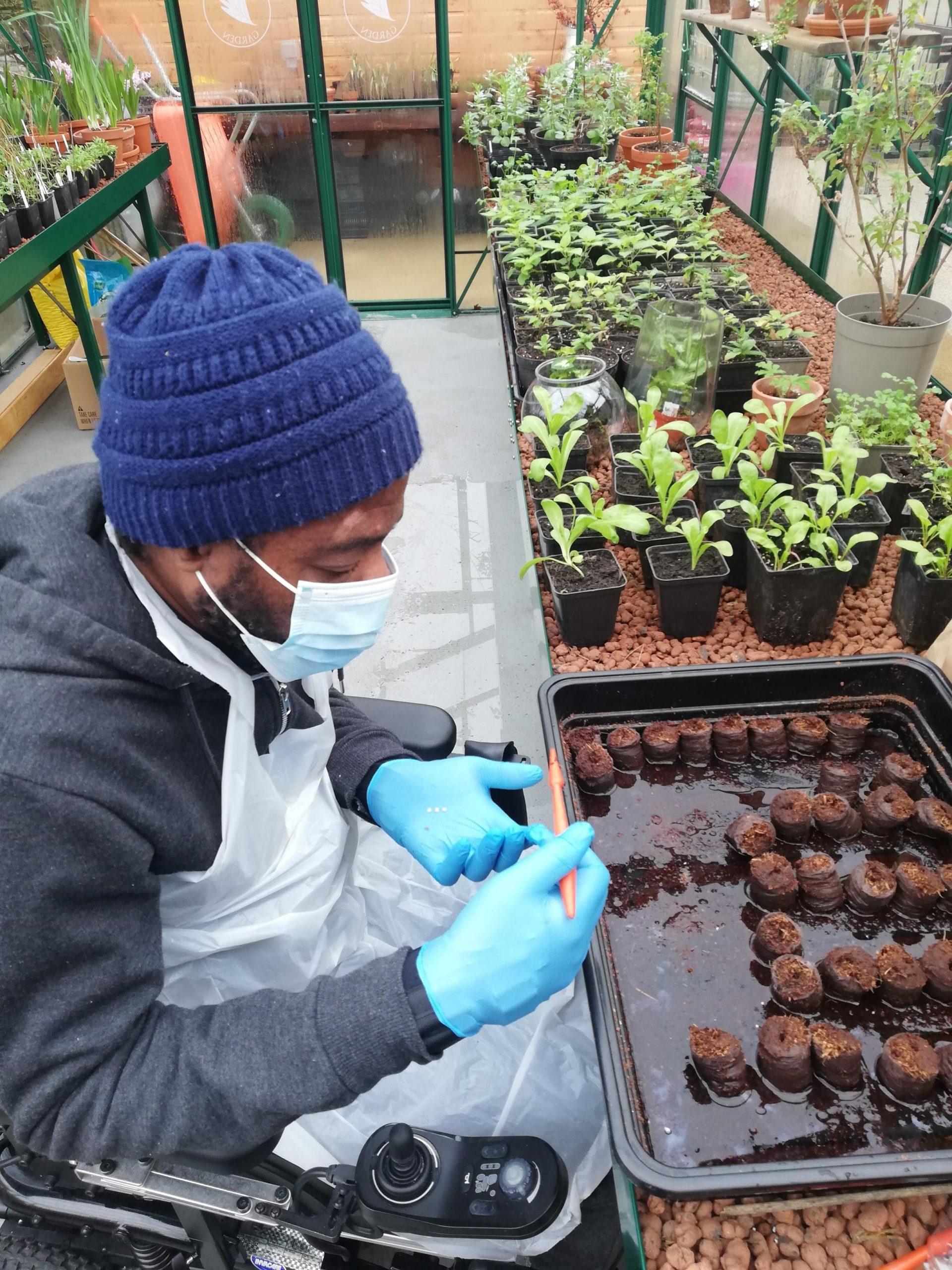 Curtis Planting Seeds